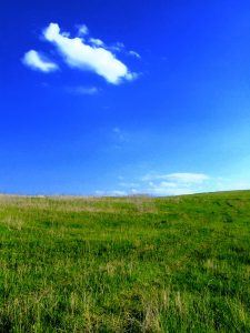 Buying land: where to look, how to assess plots for ...