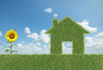 Eco Homes - the way forward?
